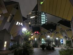 Winter_2012_12_Rotterdam_23