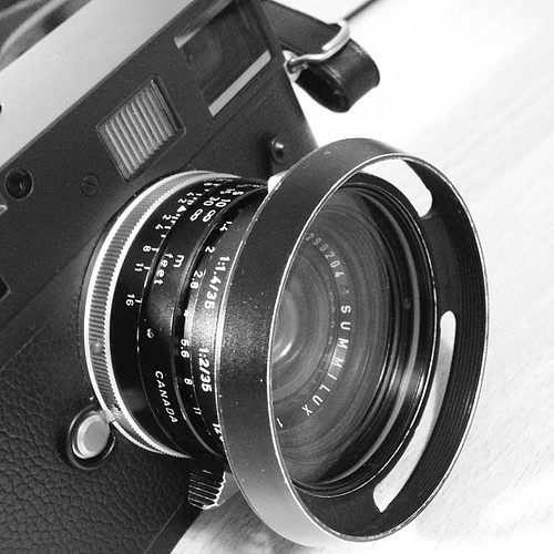 Summilux comeback, today (^.^)