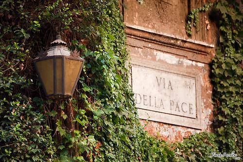 Roma (Italia)