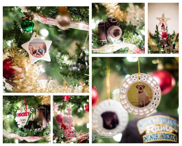 20121224 Ornaments-WM