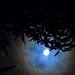 Cazando lunas