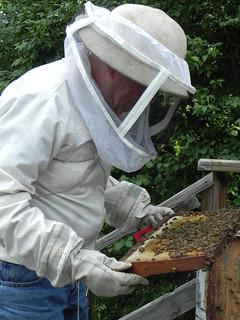 Audubon's Honeybees and Beekeeper Walt Dahlgren