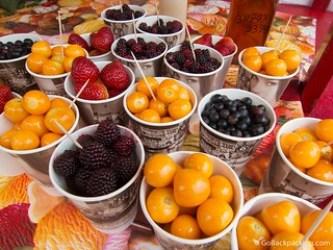 mortiño, uchuvas, fresas