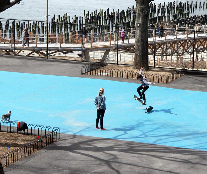 squibb park skate boarders