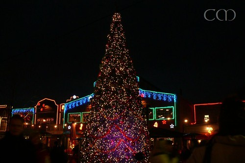 Clever illumination from in- and outside made the tree look different again and again...