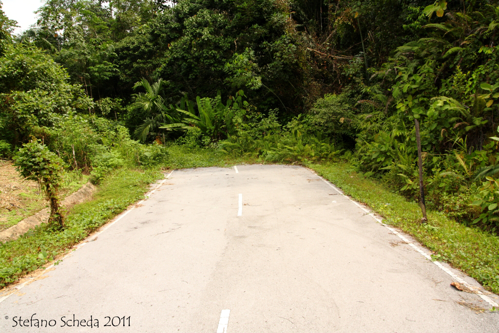 End of the road - Malaysian Borneo