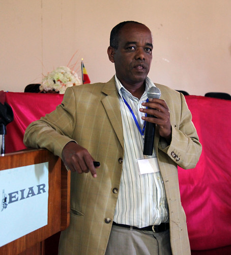 Getnet Assefa, Ethiopian Institute of Agricultural Research (EIAR), Livestock director