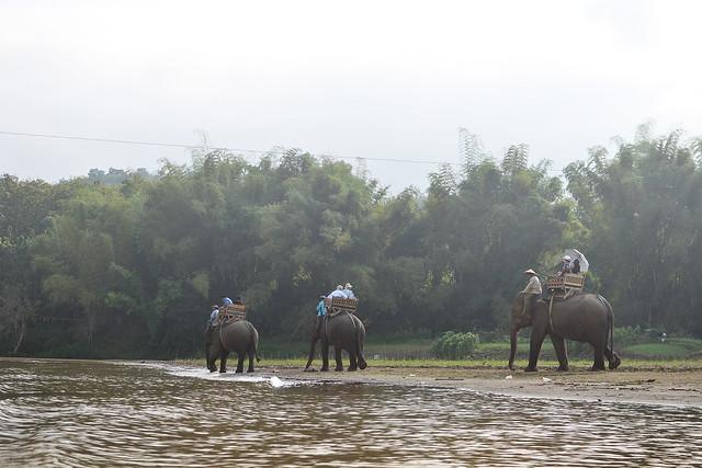 Hill Tribes, Luang Prabang Laos