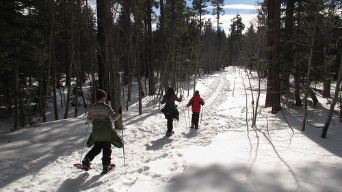 Snowshoeing at Taylor Creek SNO-PARK