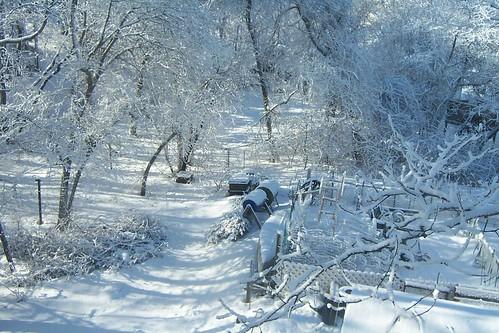 snowsnow0003