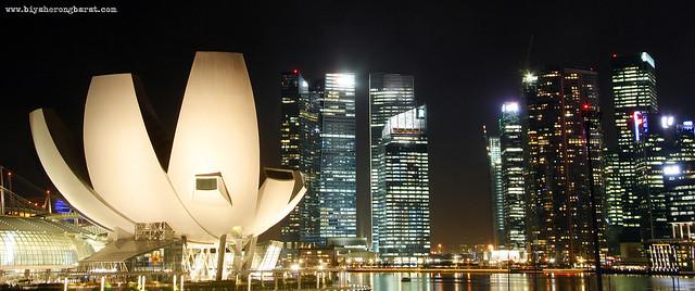 ArtScience Museum in Singapore Marina Bay Front