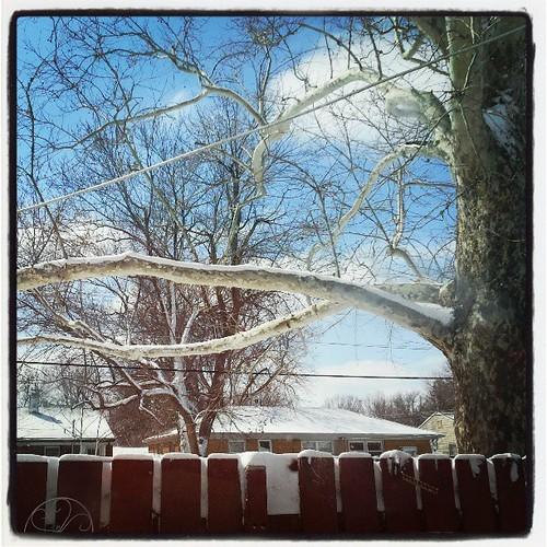 Sunshine, clouds, snow. Love it! #wichita #winter #windy #spring #snow #blueskies #afterthestorm by chauntelensey