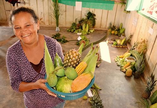 PDS Brasília - Exposição de produtos agrícolas
