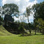Guatemala, Ruinas de Tikal 27