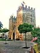 Puerta de Xara, alcudia