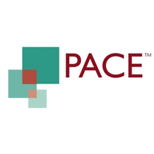 Logo_PACE-Partners_www.thepacepartners.co_dian-hasan-branding_UK-12