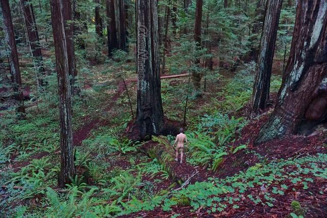 naturist 0014 Orr springs, CA, USA