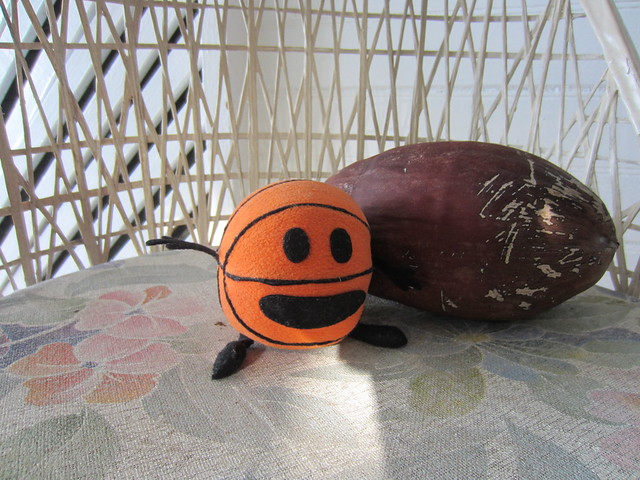 Bally and a coconut