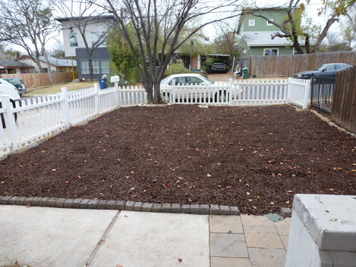 12-14-12 TX - Austin, Frontyard in progress 1