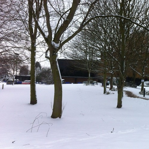 Snow -2