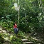 Guatemala, Ruinas de Tikal 34