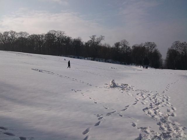 Spring is coming to Schönbrunn (15)