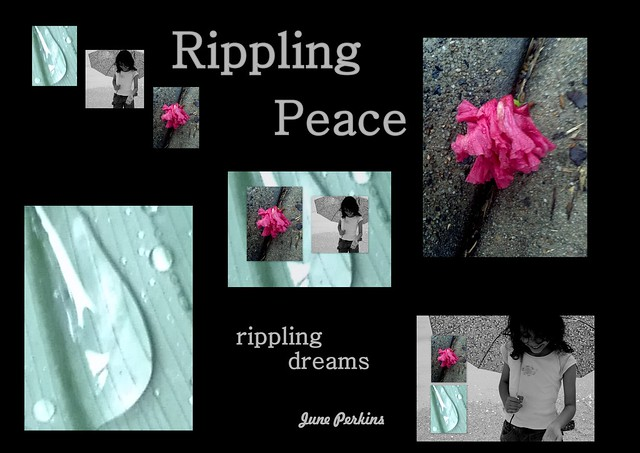 peaceripple