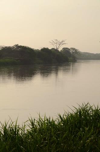 Rio Magdalena at dawn
