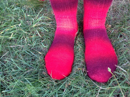 Sweet Cranberry Socks