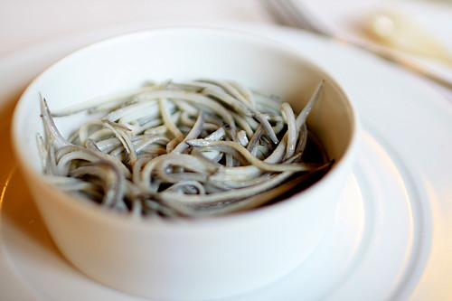 Course 11: Baby eels
