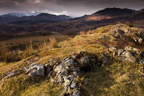 Golau Cymraeg - Welsh Light