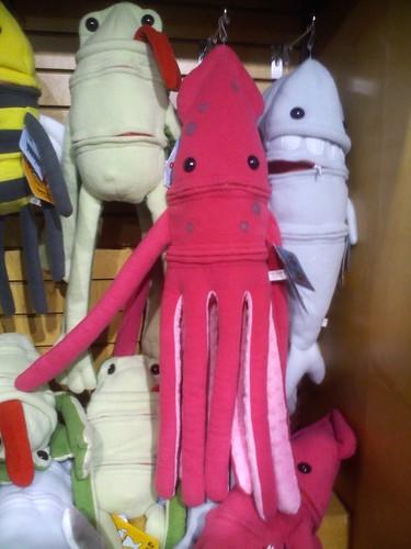 On the plush octopus