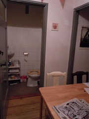 The Flat, Toilet Room right Off the Common Space