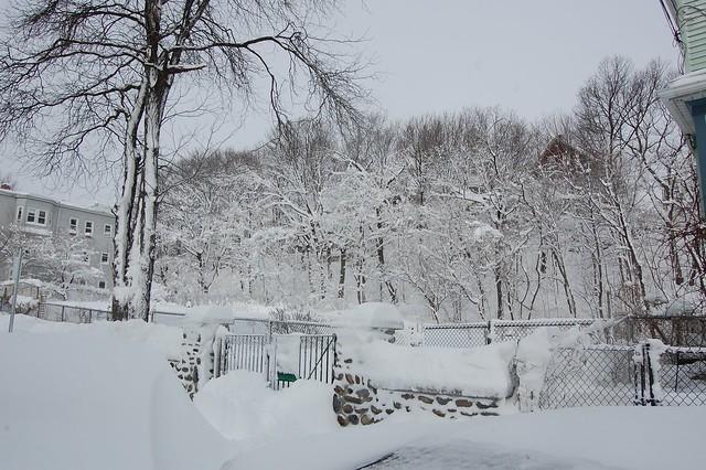 Snowy Community Garden