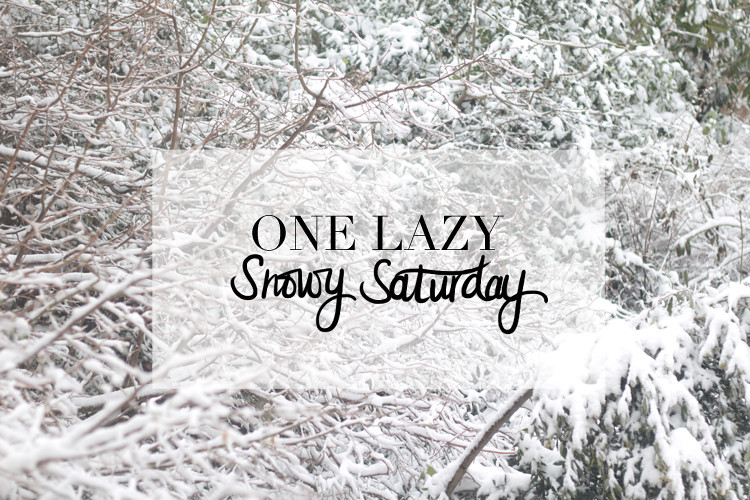 one lazy snowy sat