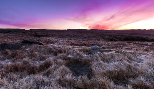 Desolation - Saddleworth Moor