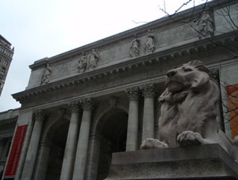 the lion & the library