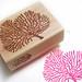 Coral Stamp: Hand Carved Stamp