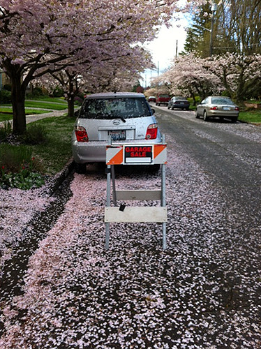 Sale sign with cherry blossoms