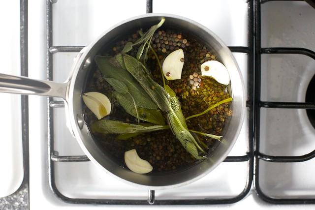 cooking lentils de puy with sage, garlic