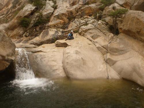 riu pitrisconi
