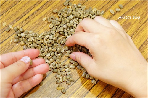 台東太麻里+咖啡豐盛咖啡018