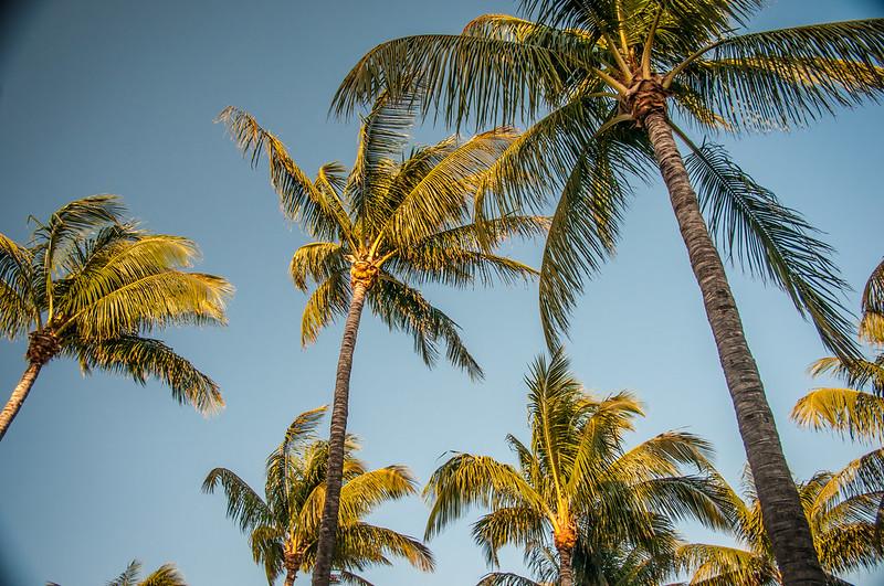 South Beach Miami-6