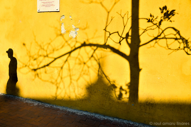 Shadows on Yellow Wall - ©Raul Amaru Linares