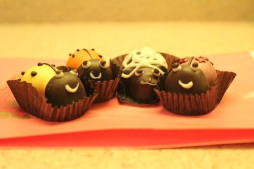 Chocolate Ladybugs (and a lamb)