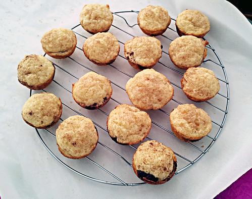 Chocolate babka muffins