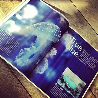 True Blue publicatie kwal magazine Roots.