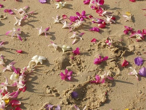 201202100206_beach-wedding-flowers