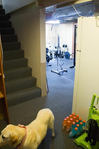 basement redo