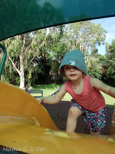 Ducks and playgrounds (9)